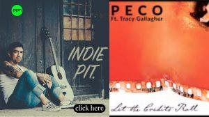 peco review spotify Playlist pitch by Playlistpitchnetwork
