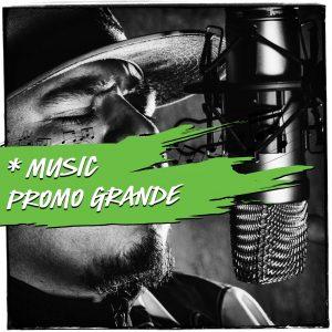 Music Promotion - music promo grande spotify playlist promotion by ppn playlistpitchnetwork.com